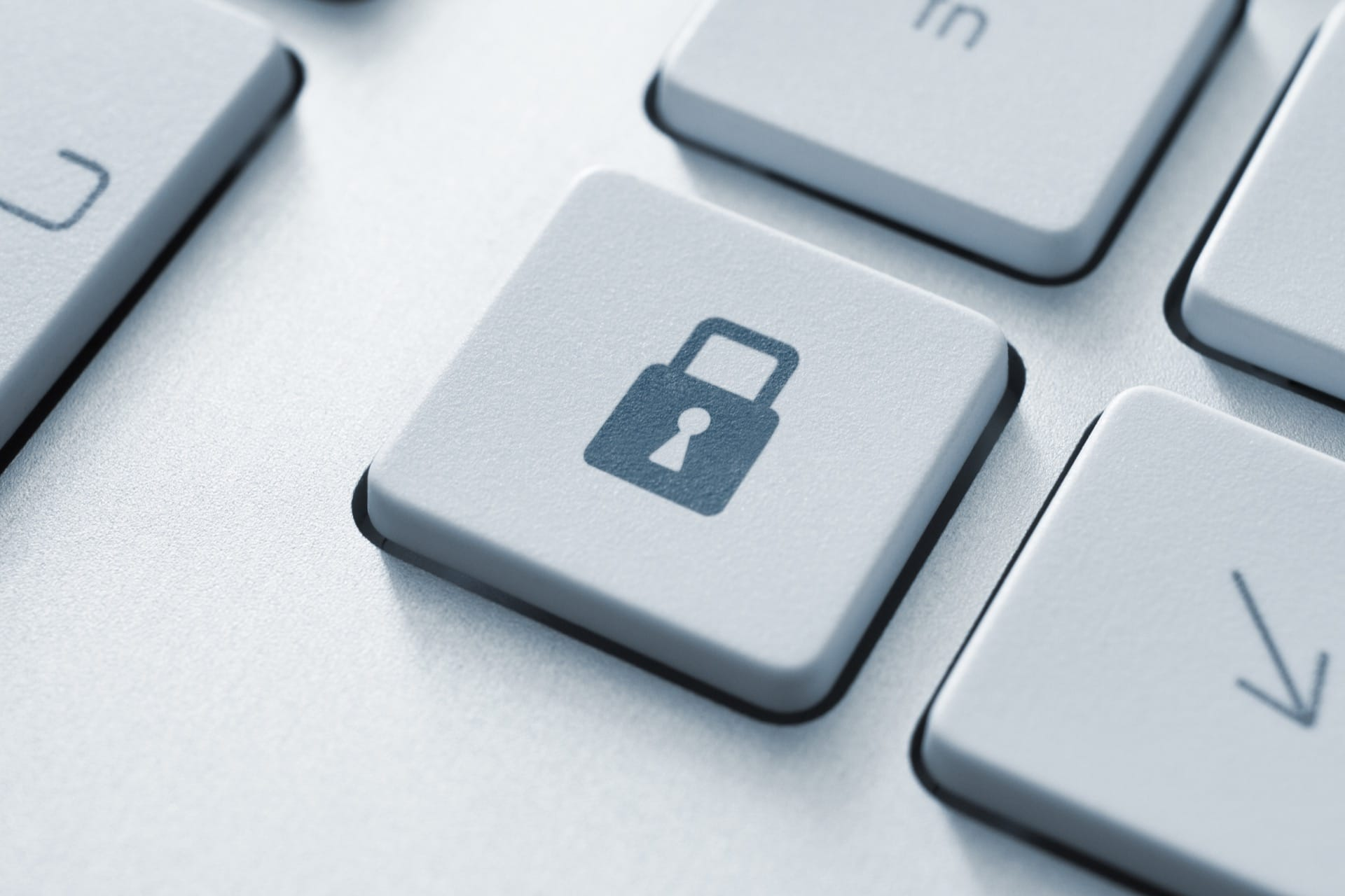 European Data Protection Supervisor shares his position on the Digital Services Act Package